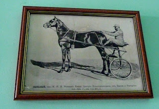 Дібрівка. Кінний завод. Фото з музею