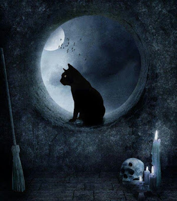 scary good night image with cat