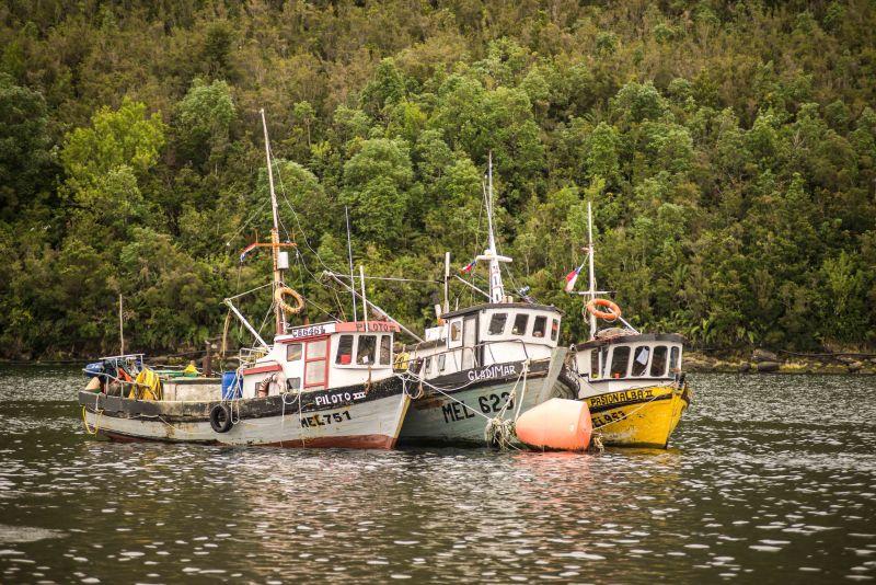 Pescadores y acuicultores artesanales