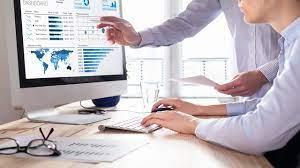 enterprise software consultant