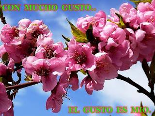 https://misqueridoscuadernos.blogspot.com.es/2017/03/con-mucho-gusto-el-gusto-es-mio.html?showComment=1489483496852#c5068429710072504176