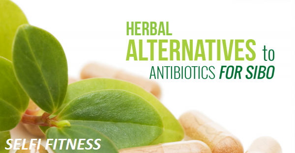 Antibiotic alternatives - the best natural alternatives and solutions?