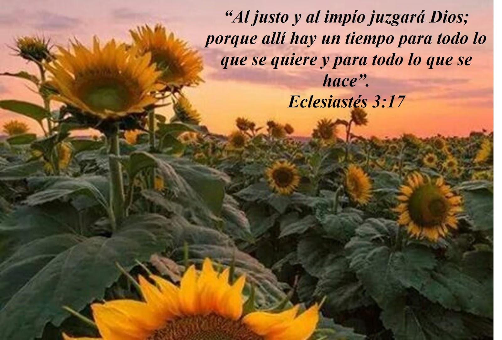 Amado Tres realidades que no debemos ignorar (Eclesiastés 3:16-20  FE18