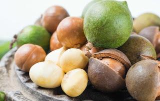 Macadamia anuncia la recuperación agrícola de las tierras altas