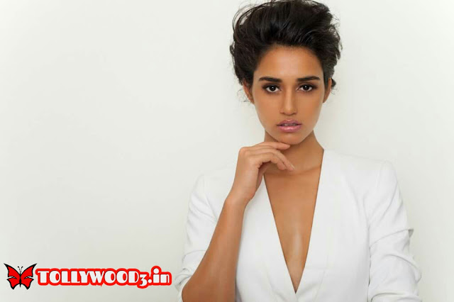 Beautiful Disha Patani HD Hot Photos