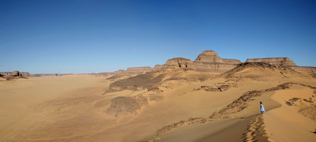 Fish in the Sahara? Yes, in the early Holocene