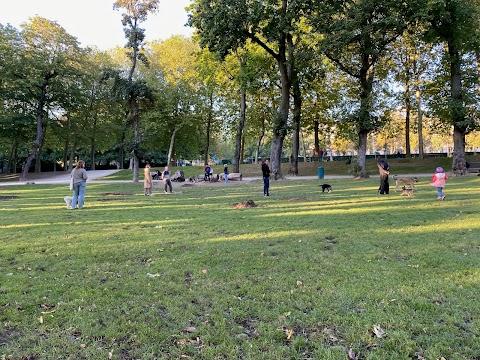 Najfajniejsze parki dla psów w Brukseli