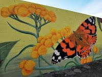 Albury Street Art | Kristina Greenwood