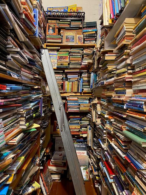 Queenscliff book shops