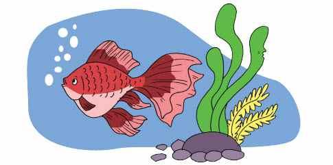 Gerak Ikan