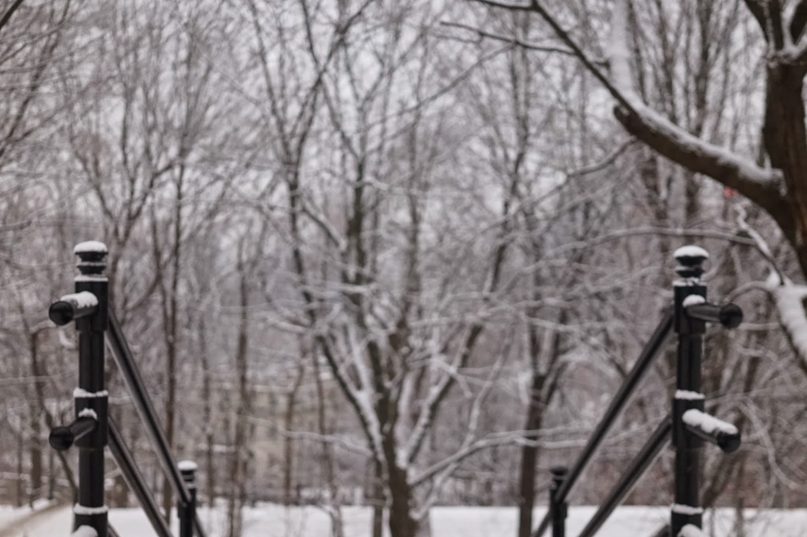 mont royal winter
