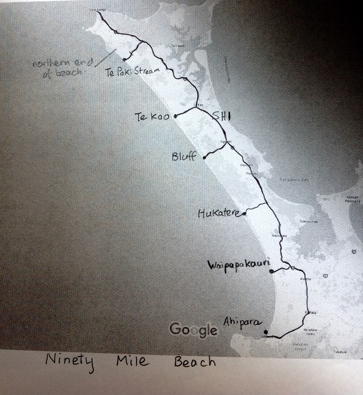 Cycling ninety mile beach northland cycle touring in new zealand the high tide island can be reached from the beach at all times except full tide but on the ocean side is for ever exposed to the full force of the waves nvjuhfo Gallery