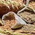 ফুড কর্পোরেশন এর কর্মী নিয়োগ | Food Corporation of India recruitment 2019 | total post 4103