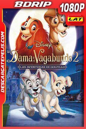 La dama y el vagabundo 2 (2001) FULL HD 1080p BDRip Latino – Ingles