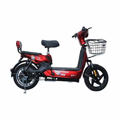 Electric-Bike-Detel-Easy