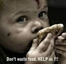 Save Food Save Humanity