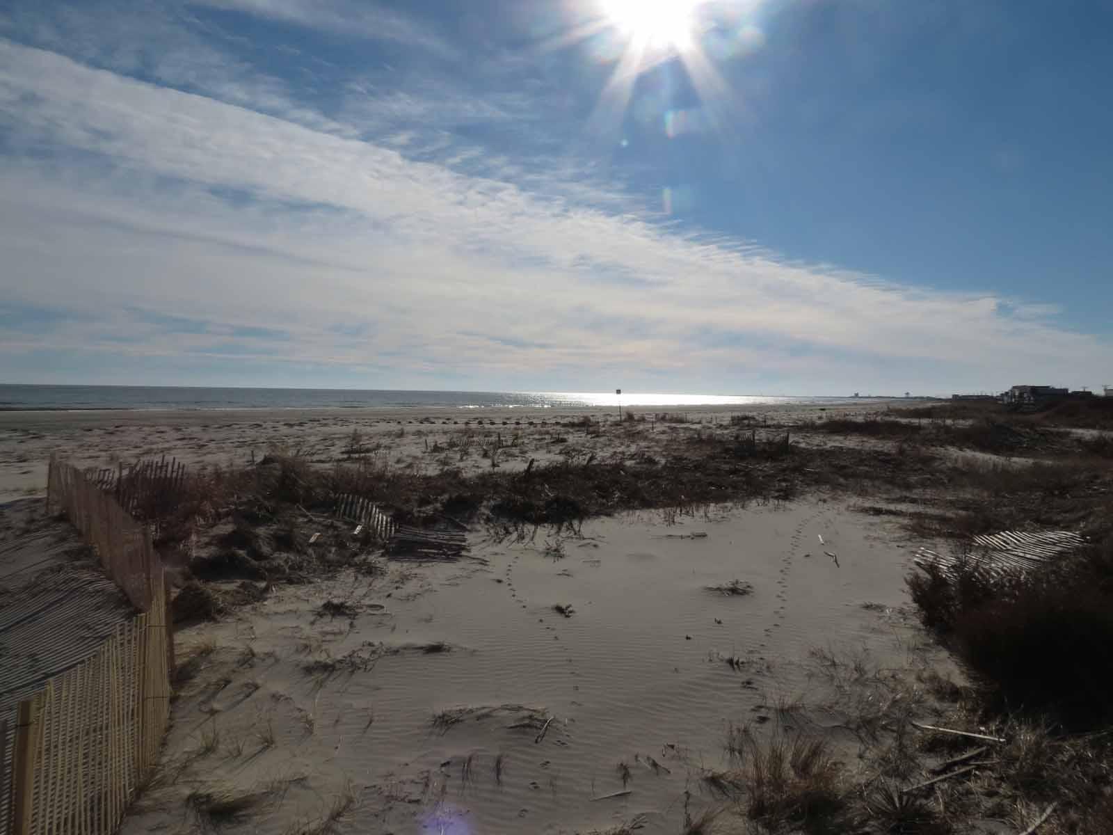 Lynda Grace An Hour Away: January 2013 Photos from Ocean