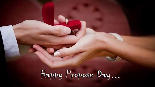 propose day,rose day,happy propose day,propose day whatsapp video,propose day whatsapp status,happy rose day,propose day wallpaper,happy rose day 2019,rose day whatsapp status,happy valentine's day,happy rose day status,happy valentine day 2019 date,rose day status 2019,rose day status,happy valentines day 2019,valentine day,happy propose day 2019,propose day images