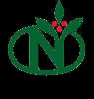 N Logo 4c cookie