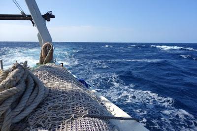 www.pescaturismomallorca.com mar en Mallorca