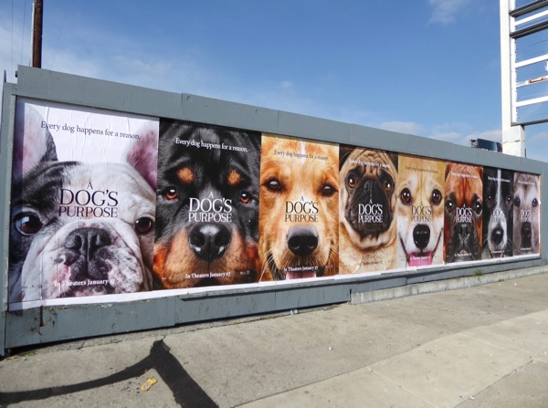 Dogs Purpose movie posters