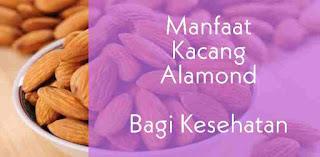 Manfaat Kacang Almond Bagi Kesehatan
