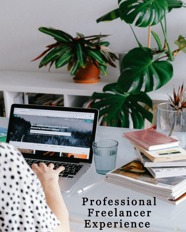 Professional Freelancer Experience