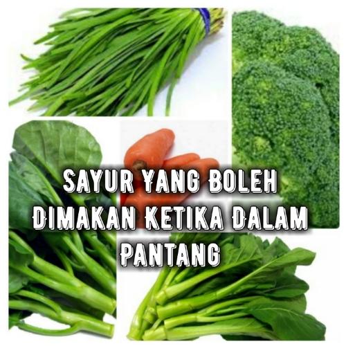 Sayur Yang Boleh Dimakan Ketika Dalam Pantang