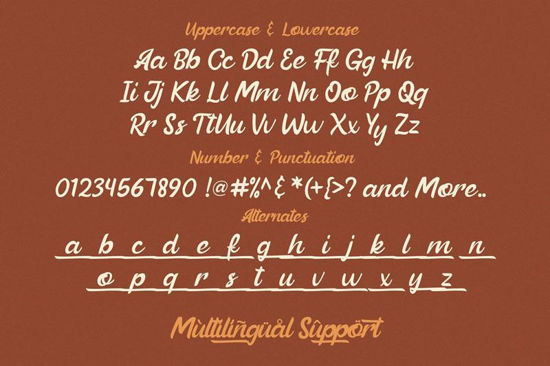 Beautiful Vibes - Bold Script Font