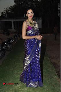 Model Shilpa Reddy Stills in Purple Silk Saree at Gudi Sambaralu 2017 Sri Ramachandra Swami Temple  0062.JPG