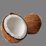 coconut in spanish