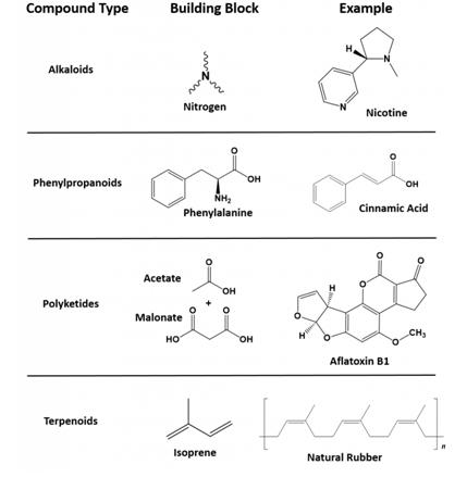 Kimia Organik 3#9 Karakteristik Senyawa Organik Bahan Alam