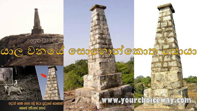 යාල වනයේ සොහොන්කොත සොයා.. 🌳⚰️⚰️ (Yala - Sudu Dadayakkaru) - Your Choice Way