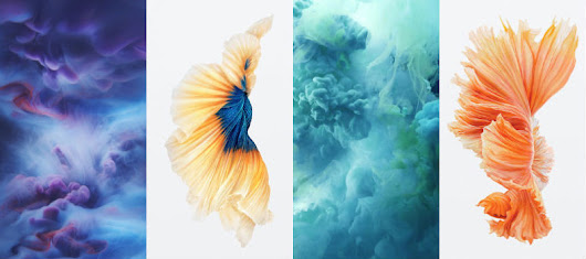 Bộ hình nền iPhone 6S New Live Wallpapers