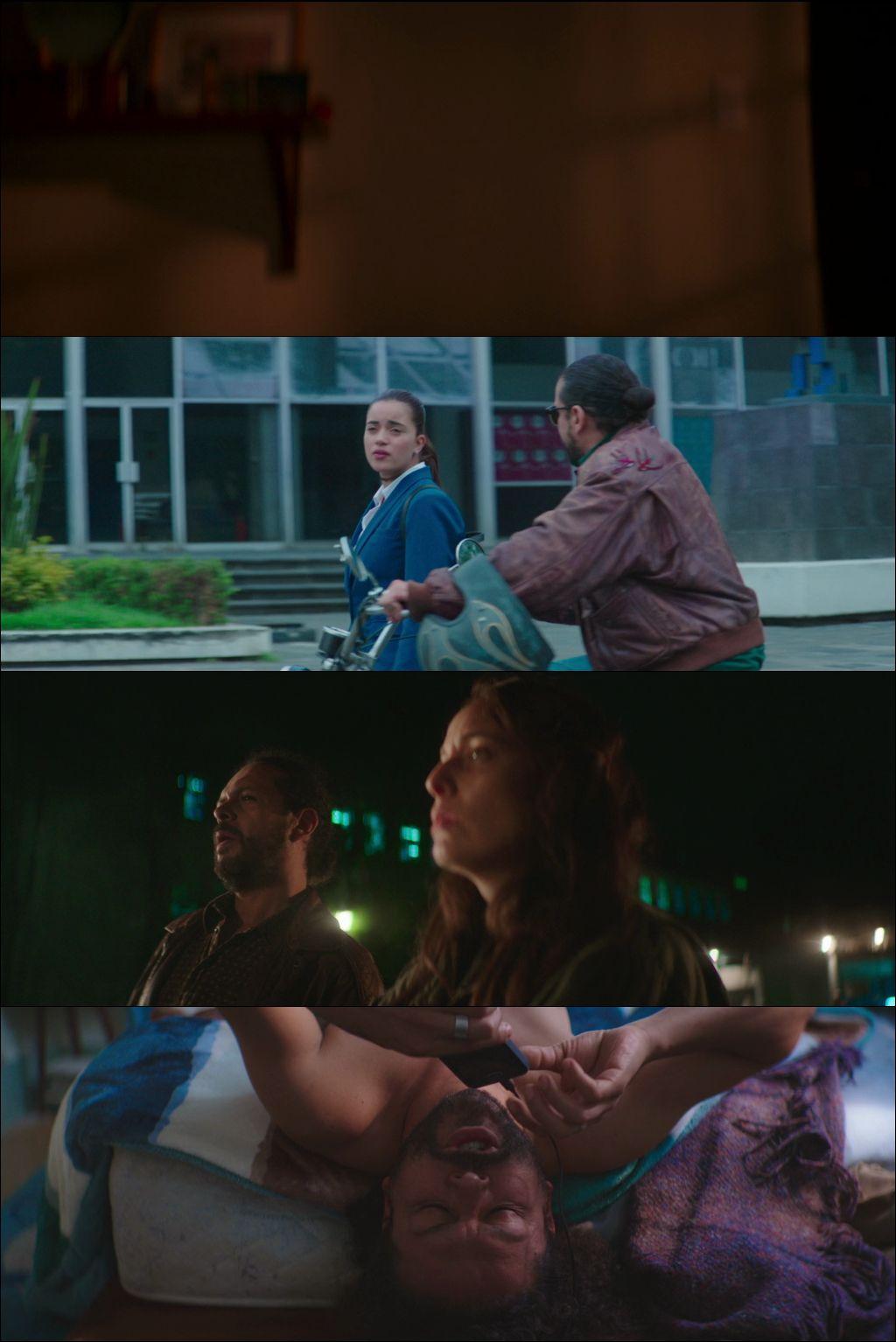 Souvenir (2019) HD 720p Latino