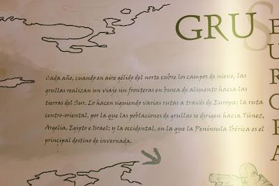 El viaje de las Grullas