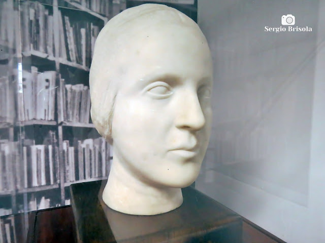 Close-up da Escultura Cabeça de Jenny - Museu Lasar Segall - São Paulo