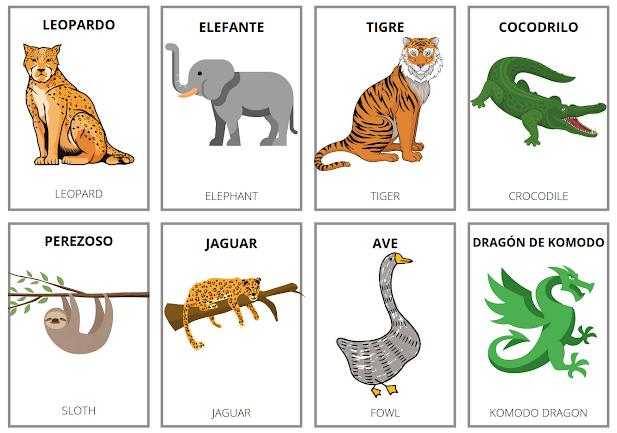 Is animal feminine or masculine in Spanish