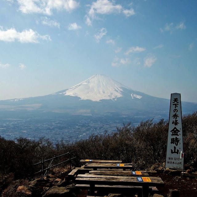 金時山山頂 富士山