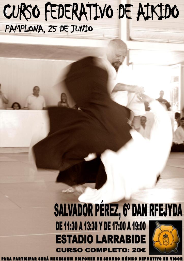 Aikido navarra curso federativo de aikido con salvador for Cursos de cocina en pamplona