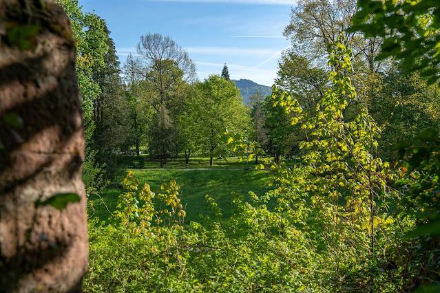 Premiumwanderweg Murgleiter | Etappe 1 von Gaggenau nach Gernsbach | Wandern nördlicher Schwarzwald 05
