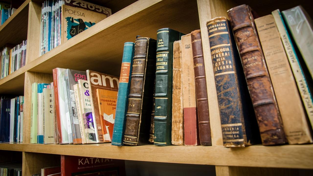 Sinopsis de libros Peruanos