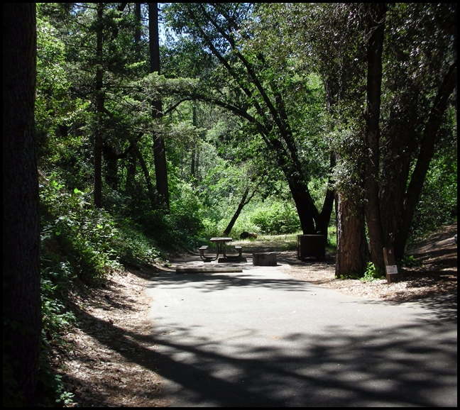 Camping Along I 5 Bailey Cove Campground