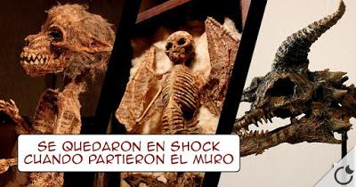 esqueletos-foram-encontrados-debaixo-de-um-orfanato