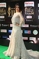 Sonal Chauhan in a stonework Floor Length Silver Designer Gown at IIFA Utsavam Awards March 2017 048.JPG