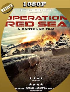 Operación mar Rojo (Operation Red Sea) (2018) REMUX [1080p] Latino [GoogleDrive] PGD