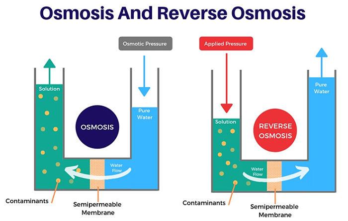 Dirección del flujo de líquido en ósmosis y ósmosis inversa