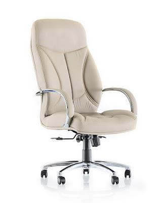 goldsit,yönetici koltuğu,makam koltuğu,ofis koltuğu,ricco,ofis sandalyesi,deri koltuk