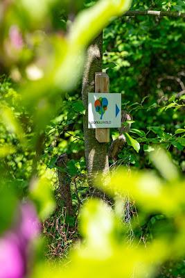 Premiumwanderweg DonAUwald  Etappe 4 von Dillingen nach Höchstädt 09