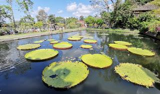 Isla de Bali, Tirta Gangga.